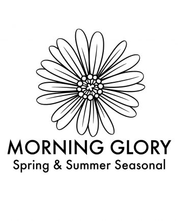 morning-glory-new